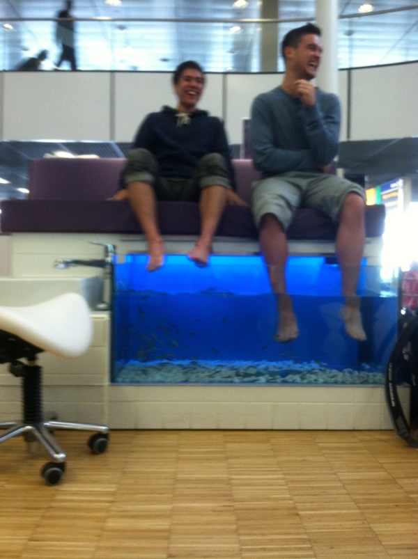 Eddy and JR preparing for their feet to be cleaned!